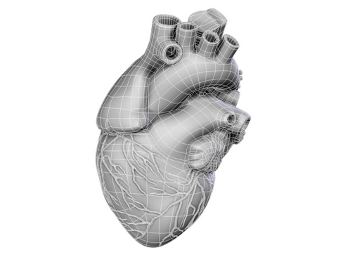 heart 2 3d model 3ds max lwo ma mb obj 116677