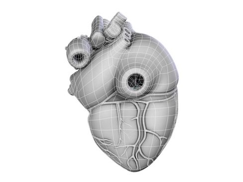 heart 2 3d model 3ds max lwo ma mb obj 116679