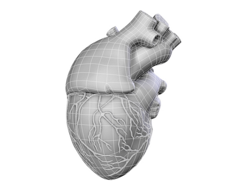 heart 2 3d model 3ds max lwo ma mb obj 116681