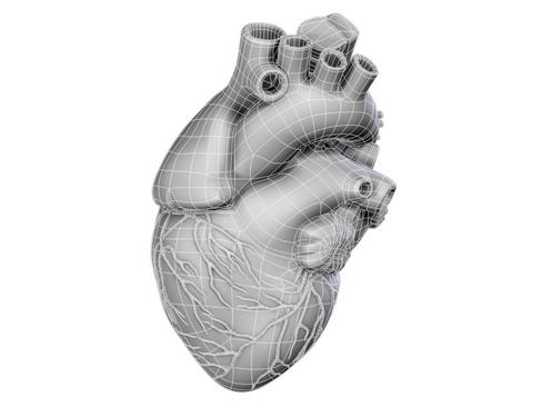 Heart 3d model 3ds max lwo lws lw ma mb obj 116677