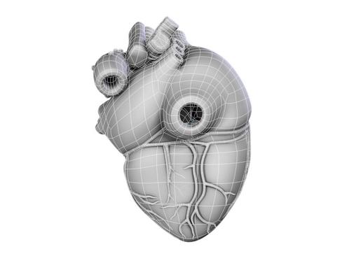 Heart 3d model 3ds max lwo lws lw ma mb obj 116679