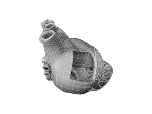 Heart 3d model 3ds max lwo lws lw ma mb obj 116697