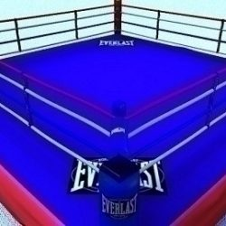BoxingRing ( 78.1KB jpg by PerspectX )