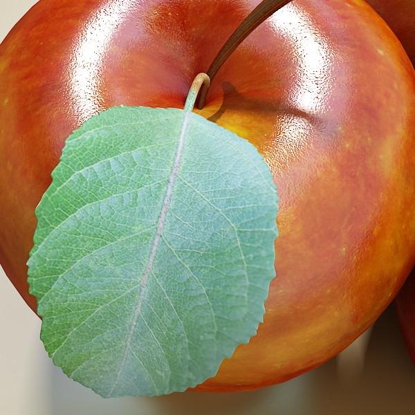 fruits & basket collection 2 3d model 3ds max fbx obj 133914