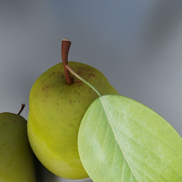pear high resolution 3d model 3ds max obj 132879