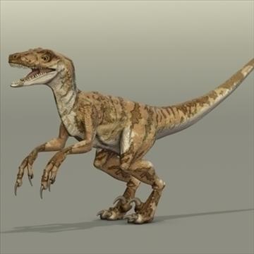 velociraptor 3d modelis hrc xsi obj 93247