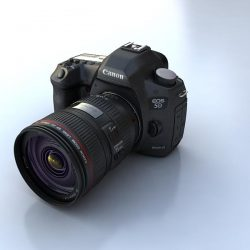 Canon 5D mark3 ( 28.2KB jpg by S.E )