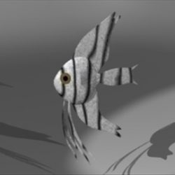 Angel Fish ( 29.87KB jpg by epicsoftware )
