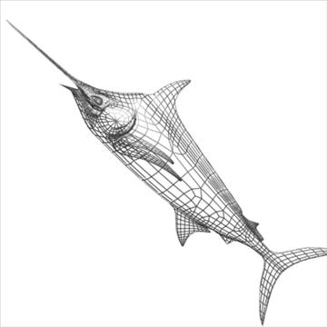 blue marlin toon fish 3d model 3ds max lwo obj 106600