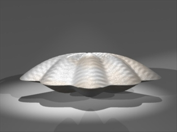 clam model 3d 3ds dxf lwo 80681