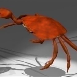Crab ( 41.2KB jpg by epicsoftware )