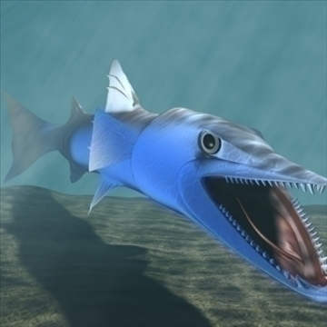 killer barracuda 3d líkan 3ds max dxf obj 105391