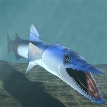 killer barracuda 3d model 3ds max dxf obj 105396