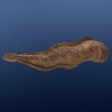 moray eel animated 3d загвар max fbx ma mb 96775