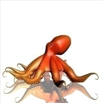 octopus 3d model max obj 104919