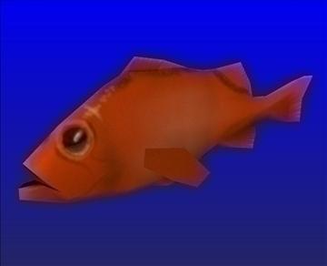 red fish 3d model b3d x 95278