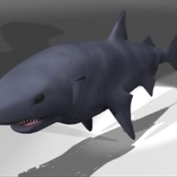 Shark2 ( 36.12KB jpg by epicsoftware )