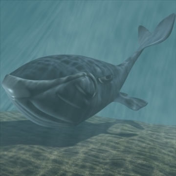 toon whale 3d model 3ds max dxf obj 105717