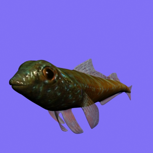 tripterygion fish rigged 3d model 3ds max fbx lwo obj 112878
