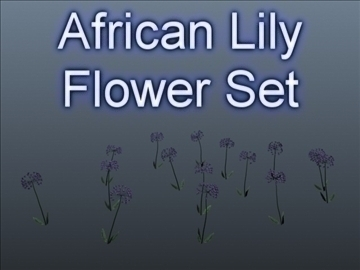 african lily set 001 3d model 3ds maks obj 102654