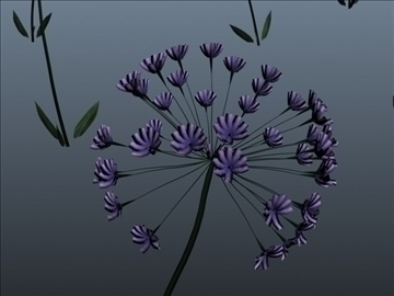 african lily set 001 3d model 3ds max obj 102655