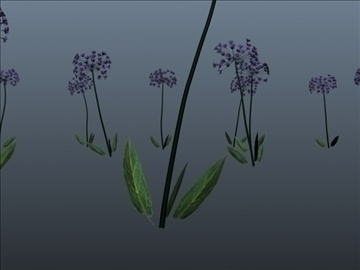 african lily set 001 3d model 3ds max obj 102656