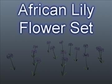 African Lily Set 001 ( 52.44KB jpg by Asephei )