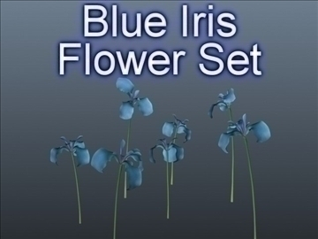 blue iris set 001 3d model 3ds max obj 102815