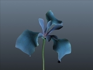 blue iris set 001 3d model 3ds max obj 102816