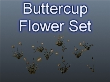buttercup set 001 3d model 3ds max obj 102660