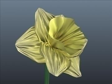 daffodil set 001 3d model 3ds max obj 102812