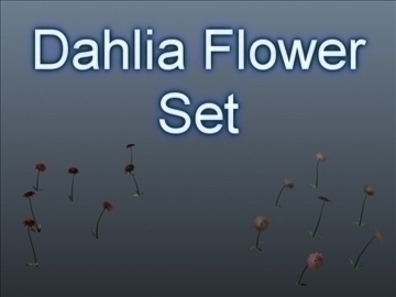 dahlia flower set 001 3d model 3ds max obj 102691