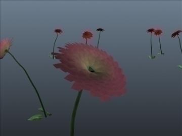dahlia flower set 001 3d model 3ds max obj 102692