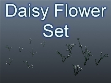 set bunga daisy 001 3d model 3ds maks obj 102698