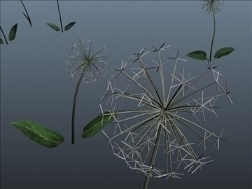 dandelion set 001 3d model 3ds max obj 102707