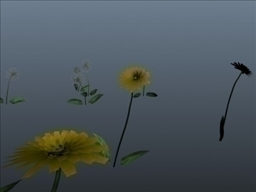 dandelion set 001 3d model 3ds max obj 102708