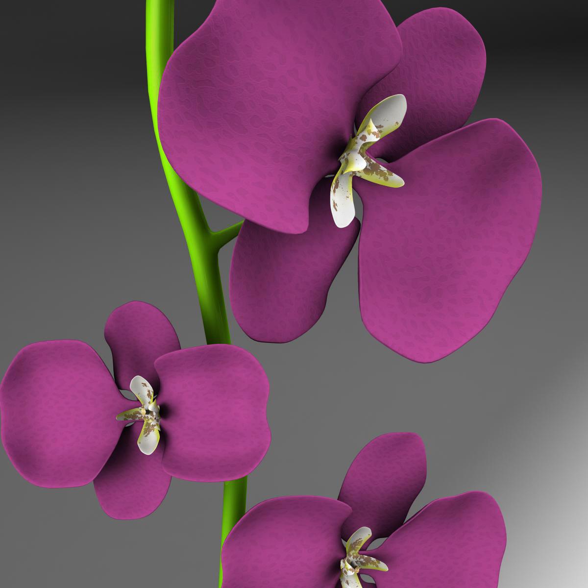 cvijetna baza 3d model 3ds max fbx ma mb obj 158097