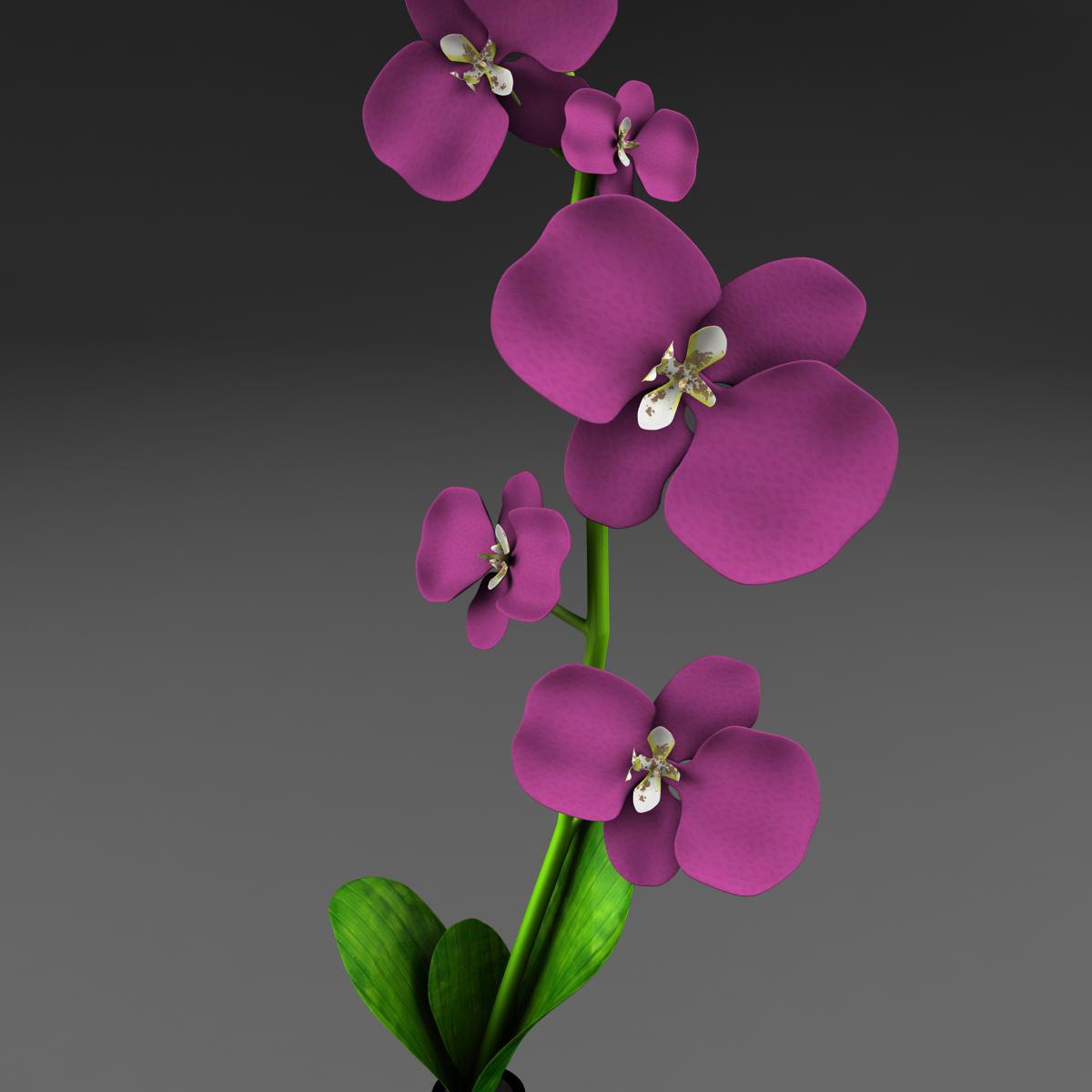 cvijetna baza 3d model 3ds max fbx ma mb obj 158099