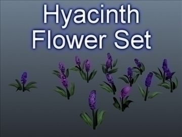 hyacinth flower set 001 3d model 3ds max obj 102800