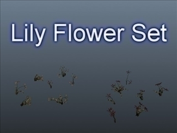 Lily flower set 001 3d modelo 3ds max obj 102805