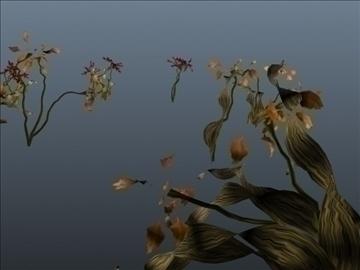 lily flower set 001 3d model 3ds max obj 102807