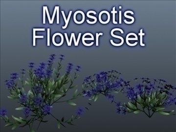myosotis set 001 3d model 3ds max obj 102839