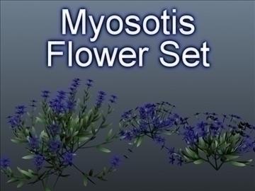myosotis набір 001 3d модель 3ds max obj 102839
