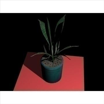 model plant1 3d 3ds 97457