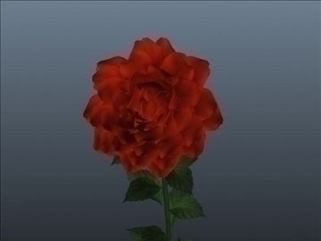 rose flower set 001 3d model 3ds max obj 102847