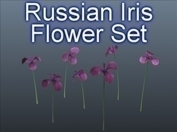 russian iris set 001 3d model 3ds max obj 102834