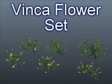 vinca flower set 001 3d model 3ds max obj 102997