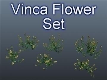 vinca цэцгийн багц 001 3d загвар 3ds max obj 102997