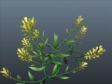 vinca flower set 001 3d model 3ds max obj 102999