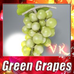 3D Model Green Grapes High Detail ( 114.73KB jpg by VKModels )